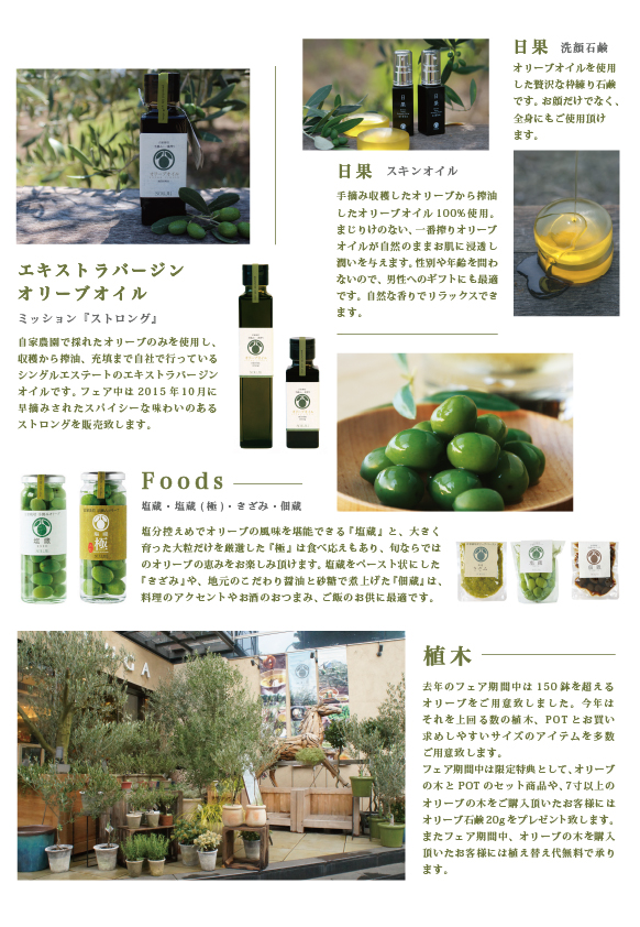 a4_souju_item